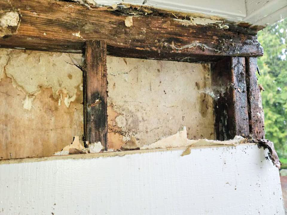 Dry Rot Repair Contractors in Pierce County | Allphaseconstructionllc.com